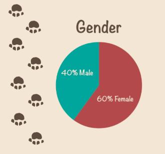 Dog Gender