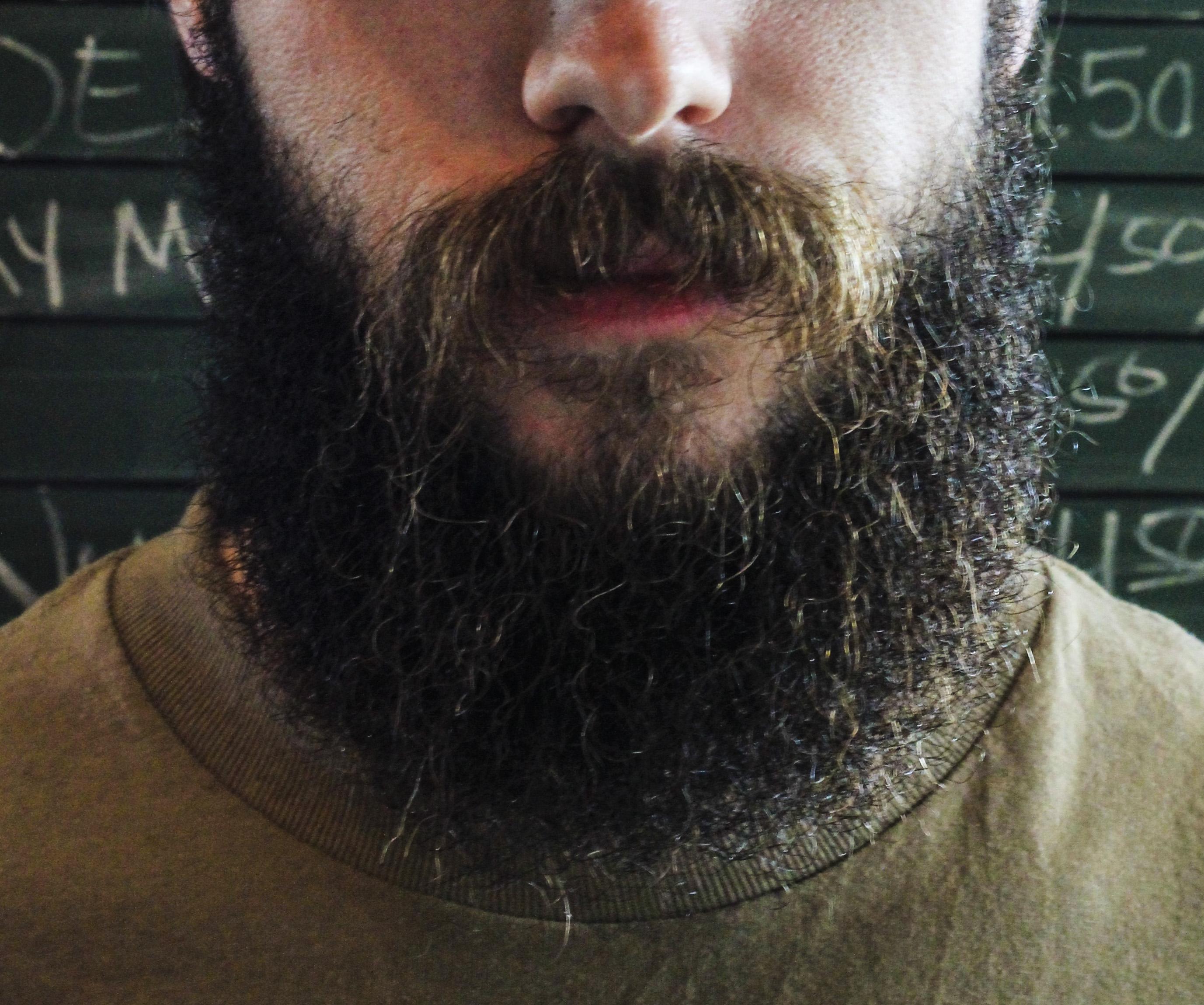 Gabriel Neas Beard Close-Up