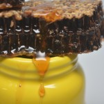 The removal of Ewing's resulted in fresh organic honey