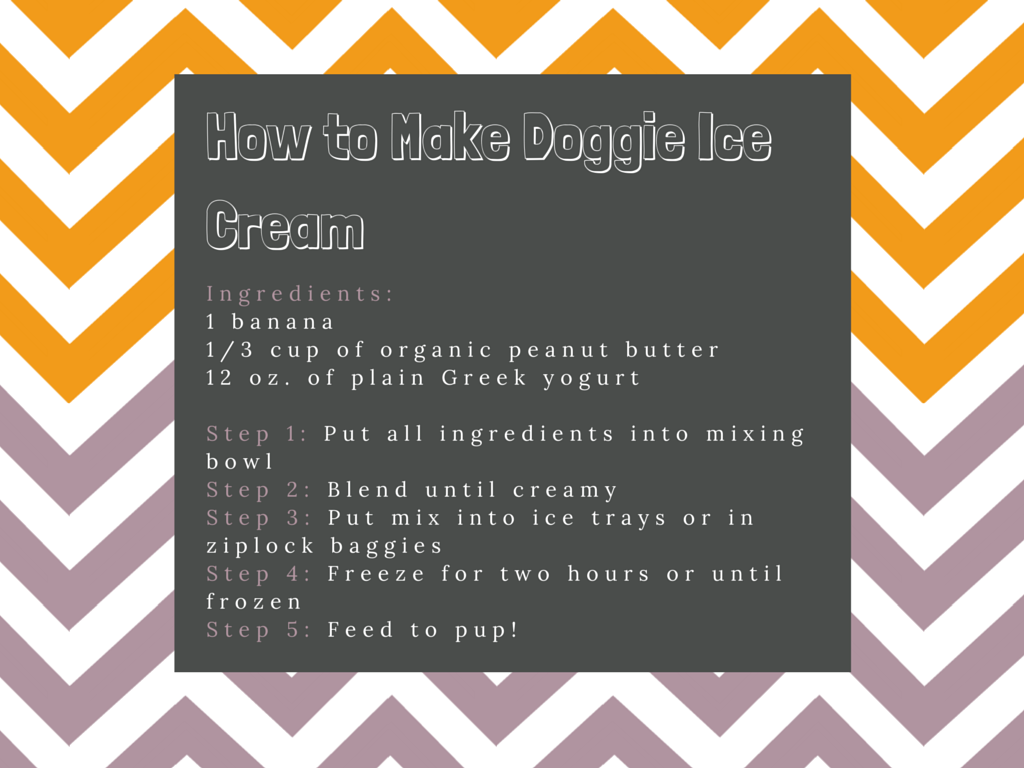 How to Make Doggie Ice Cream
