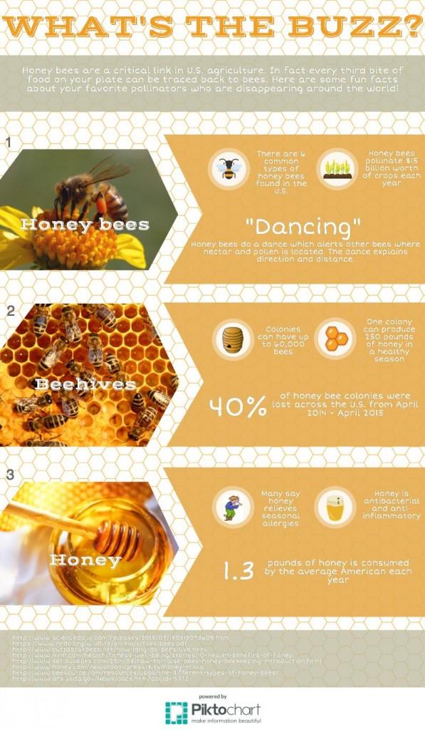 Bee Story-8