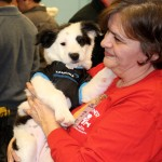 "3rd year volunteer proudly displays a puppy dressed up in a Carolina Panthers jersey in honor of the ""Puppy Bowl."" (Photo by Stephanie Rothman)"
