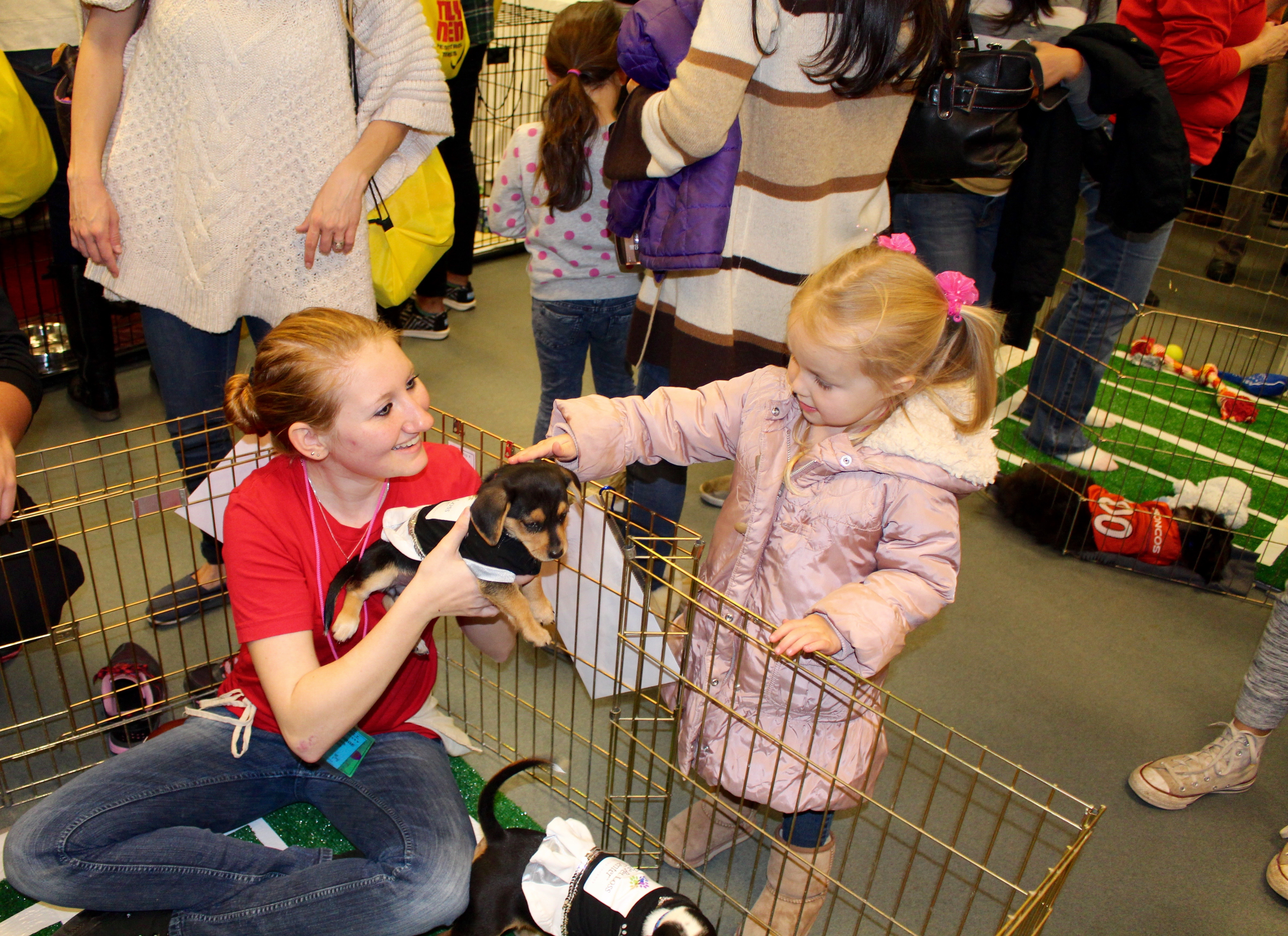 "Austin Humane Society volunteer introduces one of the ""puppy cheerleaders"" to a young girl in the adoption event space. (Photo by Stephanie Rothman)"