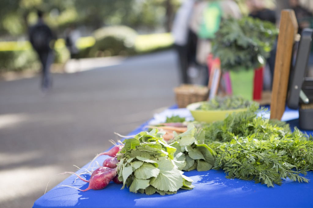 The UT Microfarm table located in the West Mall plaza on campus last Monday afternoon.
